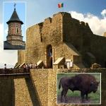 Traseu Turistic Targu Neamt – Manastirea Neamt