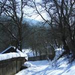 Iarna in satul manastiresc Agapia