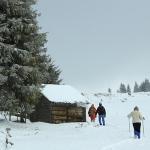 Hiking in Cheile Bicazului – Poiana Ghilgos