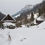 Peisaje de iarnă în zona Bârnadu Cheile Şugăului