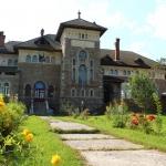 """Muzeul de artă"""" Iulia Hălăucescu"""" din Tarcău"""