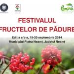 Festivalul Fructelor de Pădure 2014
