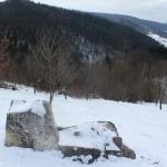 Cetatea Dacică Bâtca Doamnei