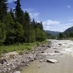 Rezervaţia forestieră Goşman, Rezervaţia faunistică Brateş, Cascada şi Cheile Bolovănişului