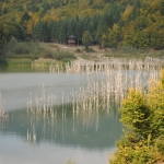 Rezervaţia naturală LACUL CUEJDEL – Judeţul Neamţ