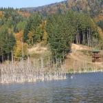 15 motive să vizitezi județul Neamț – V
