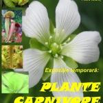Plante carnivore, expoziție temporară