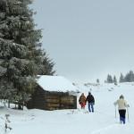 hiking-cheile-bicazului-poiana-ghilgos