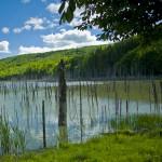drumetie-lacul-cuejdel