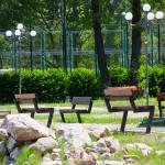 scoala-de-vara-piatra-neamt-2011