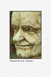 Muzeul de Arta din Roman