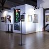 Bienala Lascar Vorel 2013