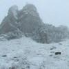 Traseu Trekking Ceahlau - Lutu Rosu iarna
