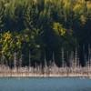 Drumetii in parcurile si rezervatiile din Neamt
