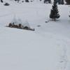 Peisaje de iarna Barnadu Cheile Sugaului 2012
