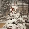 Piatra Neamt iarna ian 2013