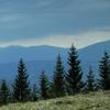 Traseu Montan Varful Asau - zona Damuc