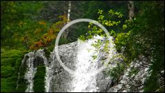 Cascade din Judetul Neamt