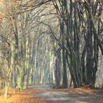 Traseu Hiking in Piatra Neamt – Stanca Trei Caldari