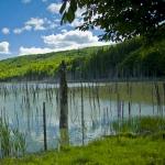 Drumetie in Neamt: Mergand spre Lacul Cuejdel