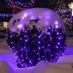 Calendarul Evenimentelor din Judeţul Neamţ in perioada 6 – 19 decembrie 2010