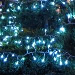 Magia Sarbatorilor de Iarna la Piatra Neamt