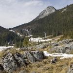 Traseu în Cheile Bicazului: Valea Bicăjelului – Piatra Cherecului