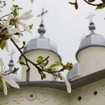 Izvorul Tămăduirii de la Mănăstirea Horaiţa