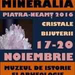 """17-20 noiembrie 2016 – Expoziția """"Mineralia"""", ediția 2016 – Muzeul de Istorie și Arheologie, Piatra Neamț"""