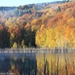 Lacuri nemțene în frunziș de toamnă