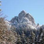 Iarna în Parcul Naţional Ceahlău