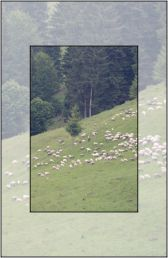 Touristic sheepfolds in Neamt