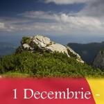 evenimente-1-Decembrie-2011