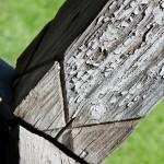06-arta-lemnului-Neamt