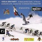 07-program-partia-cozla-ian-2013