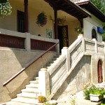 11-colectia-muzeala-casa-mihail-sadoveanu-2013