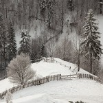 03-expozitie-salonul-de-iarna-piatra-neamt-2013