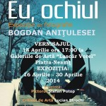 06-expozitie-bogdan-anitulesei-piatra-neamt-aprilie-2014