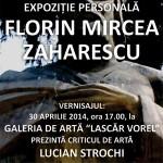 01-expo-florin-zaharescu-mai-2014