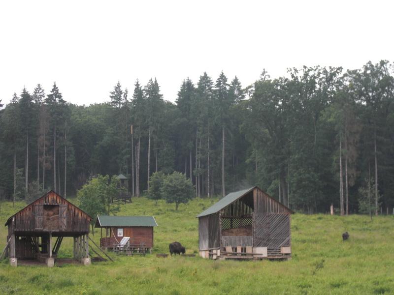 Parcul Natural Vânători Neamț