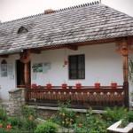 Muzeul etnografic Vasile Găman