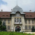Muzeul de Istorie şi Arheologie Piatra Neamţ