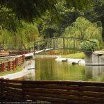 Parcul Municipal Roman