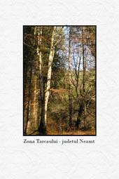 Zona Tarcau - Judetul Neamt