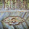 Arta si traditii in judetul Neamt