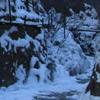 Cheile Sugaului Iarna