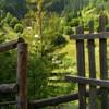 Cheile Sugaului - jud Neamt