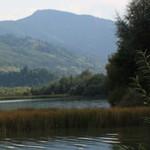 Romania Turism - Lacul Pangarati