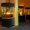 Muzeu Cucuteni