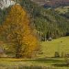 Rezervatii naturale Neamt